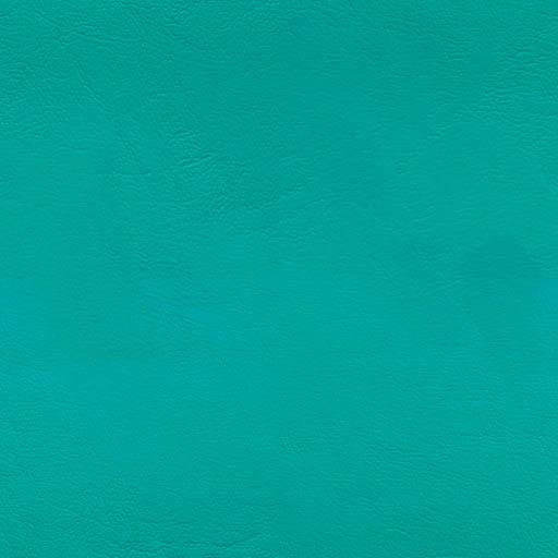 003339 - Amazonas