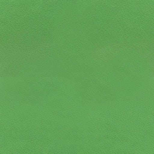 015816 - Kiwi