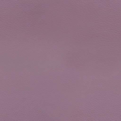 016041 - aubergine