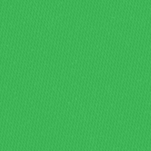 13955 - kiwi